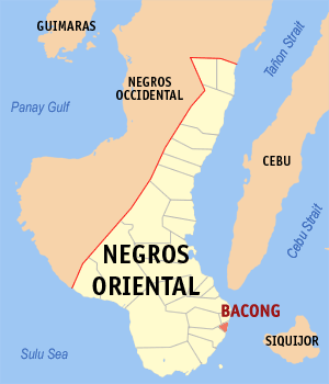 Negros oriental bacong.png