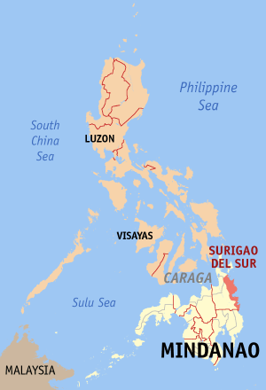 Surigao del sur philippines map locator.png