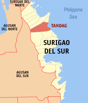 Tandag city map locator.png