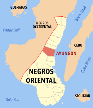 Negros oriental ayungon.png