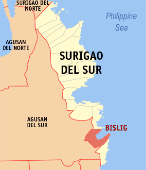 Bislig city map locator.png
