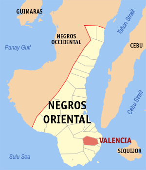 Negros oriental valencia.png