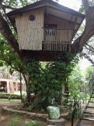 Pasonanca treehouse.jpg