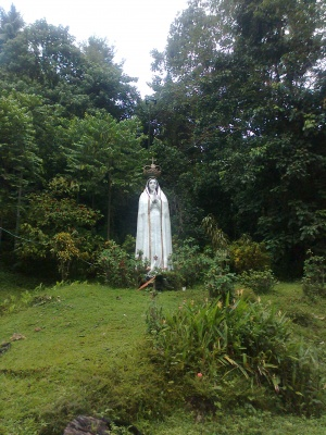 Mother Mary Pangalalan sindangan zamboanga del norte.jpg