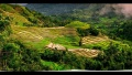 Rice Terraces of Cabalaunan, Miagao, Iloilo, Philippines.jpg