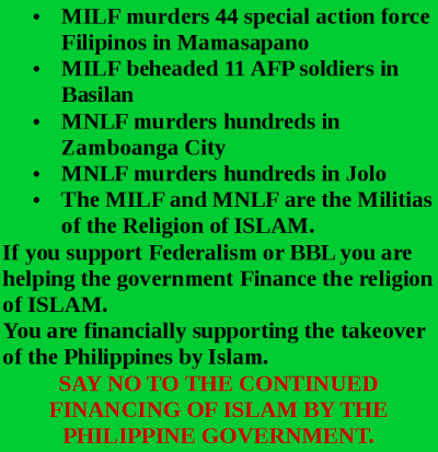 A history of the muslims in the philippines