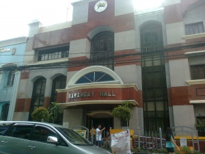 Barangay hall of palanan makati city.jpg