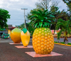 Fruit plaza gingoog city.jpg