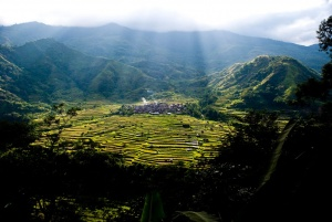 Lubo and Mangali Rice Terraces (Tanudan).jpg