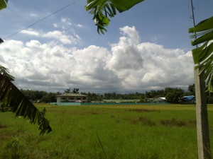 Manicahan National High School across the ricefields.jpg