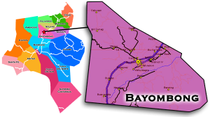 Bayombong map.png