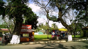 Zarraga iloilo outdoor stage and field view from street.jpg